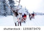Lapland  Finland   January 201...