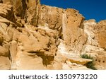 green plants among the rocks in ... | Shutterstock . vector #1350973220