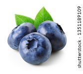 blueberries with leaves... | Shutterstock . vector #1351189109