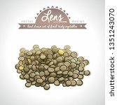 lentils  collection of fresh... | Shutterstock .eps vector #1351243070