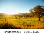 an australian sunset | Shutterstock . vector #135131603