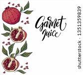 hand drawn garnet   Shutterstock .eps vector #1351359839