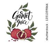 hand drawn garnet | Shutterstock .eps vector #1351359866