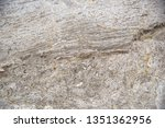 white marble patterned texture... | Shutterstock . vector #1351362956