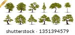collection  realistic  trees... | Shutterstock .eps vector #1351394579