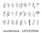 set of hand drawn elements with ... | Shutterstock .eps vector #1351525046