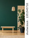 wooden stool next to plant in... | Shutterstock . vector #1351545710