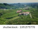 conegliano valdobbiadene region ...   Shutterstock . vector #1351575770