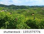 conegliano valdobbiadene region ...   Shutterstock . vector #1351575776