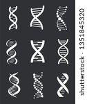 group of dna macromolecule...   Shutterstock . vector #1351845320