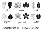 set of black silhouettes and... | Shutterstock .eps vector #1352010020