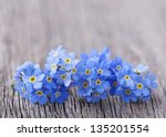 Forgetmenot Flowers On A Woode...