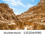 high rocky mountains in the... | Shutterstock . vector #1352064980