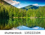 landscape with a lake and pine forest on the background of mountains - stock photo