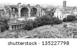 Small photo of Panorama of the Roman Forum, monochrome photo, with the Basilica Aemilia, Basilica of Maxentius, Santa Francesca Romana church and Temple of Caesar. Rome, Italy.