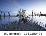 kelanang blue hour  malaysia. | Shutterstock . vector #1352280473