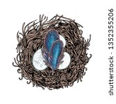 nest with bird eggs and... | Shutterstock .eps vector #1352355206