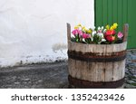 Old Wooden Bucket With Spring...