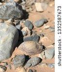 rock patterns desert | Shutterstock . vector #1352587673