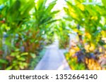 abstract blur and defocused... | Shutterstock . vector #1352664140