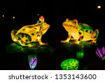Frogs Chinese Lantern Show...