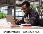 Stock photo fluffy office assistant a man working together with his grey cat 1353226766