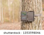 A trail camera strapped to a tree in the woods. It is open showing a photo on the screen inside. A trail camera is often used by hunters to spot deer, bear and other wildlife in the hunter's spot. - stock photo