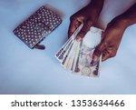 Hands Counting Nigerian Naira...
