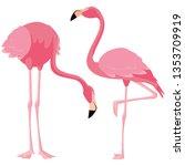 elegant flamingo birds couple | Shutterstock .eps vector #1353709919