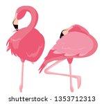 elegant flamingo birds couple | Shutterstock .eps vector #1353712313