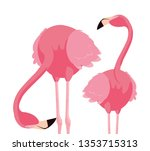 elegant flamingo birds couple | Shutterstock .eps vector #1353715313