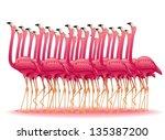 pink flamingos group | Shutterstock . vector #135387200