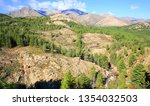 scenic hill country on corsica... | Shutterstock . vector #1354032503