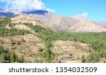 scenic hill country on corsica... | Shutterstock . vector #1354032509