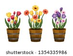set beauty flowers plants with... | Shutterstock .eps vector #1354335986