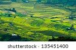 terraced rice field in mu cang... | Shutterstock . vector #135451400