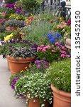 flower pot  gardening | Shutterstock . vector #135452150