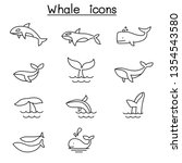 whale icon set in thin line...