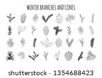 big set of hand drawn pine ... | Shutterstock .eps vector #1354688423