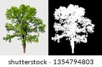 single tree on transparent... | Shutterstock . vector #1354794803