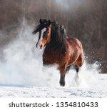 brown draft horse walk through... | Shutterstock . vector #1354810433