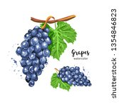 watercolor bunch of grapes on... | Shutterstock .eps vector #1354846823