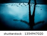 Reflection Of A Person In A...