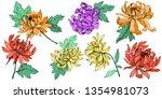vector chrysanthemum floral...   Shutterstock .eps vector #1354981073