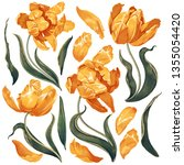 set of floral elements with... | Shutterstock .eps vector #1355054420