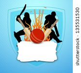 cricket batsman in playing...   Shutterstock .eps vector #135531530
