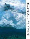 underwater view of the surfer...   Shutterstock . vector #1355444783