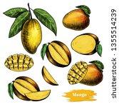 vector mango hand drawn sketch .... | Shutterstock .eps vector #1355514239