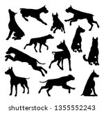 Stock vector a set of detailed animal silhouettes of a pet dog 1355552243