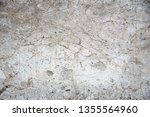 marble patterned texture... | Shutterstock . vector #1355564960